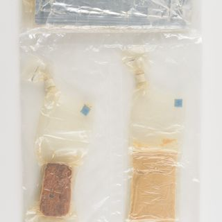 95/48/1 Meal package, space food for Gemini mission, food / plastic, maker unknown, United States of America,1965-1966