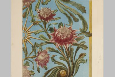 P2994 Design, 'Detail of Waratah-Panel (Designs for Wallpaper - R T Baker)', from unpublished book, 'Australian Decorative Arts', watercolour and gouache over pencil, made by Lucien Henry, Australia / France, 1889-1891
