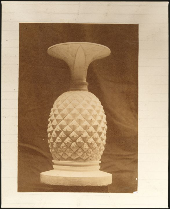 P2995-2 Design, ' Pineapple Butter Cooler and Flower vase combined', from unpublished book, 'Australian Decorative Arts', photograph, silver gelatin print, sepia toned, made by Lucien Henry, Australia / France, 1889-1891. Click to enlarge.