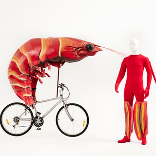 2001/84/10 Bicycle, 'Prawn', Sydney Olympic Games Closing Ceremony, designed by John King, made by Anthony Neeson / Will Northam / Tamara Ealey, Ceremonies Prop Workshop, Sydney, New South Wales, Australia, 2000