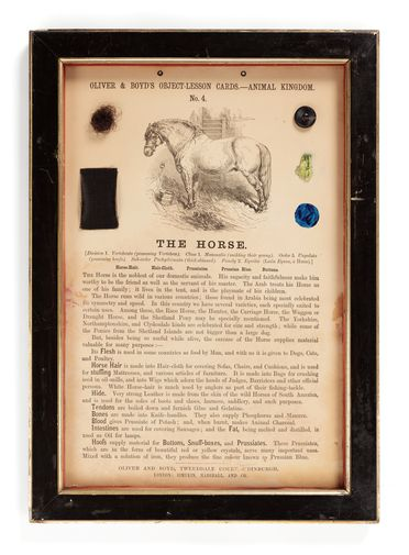 P408 Object lesson card, part of collection, 'The Horse', framed, horsehair / keratin / crystal of prussiate / cardboard / glass / wood / plastic / textile, published by Oliver and Boyd, Edinburgh, Scotland, 1880-1884