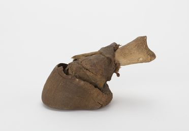 2017/4/3-4 Donkeys hoof, bone / fur, collected by Charis Schwarz, Syria, 1965, part of a collection of unique travel mementoes acquired by George and Charis Schwarz while riding a 1965 BMW motorcycle around the world, 1965-1968