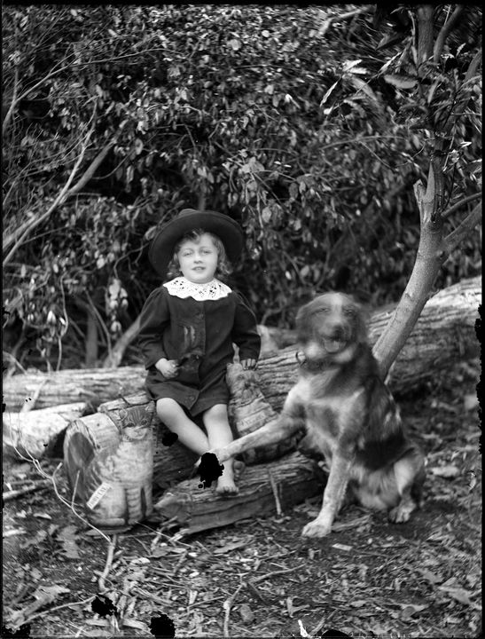 2008/165/1-81 Glass plate negative (1 of 193), portrait view of child wearing a sun hat, with dog and toy cat, glass, photographer possibly Arthur Phillips, Australia, c. 1890. Click to enlarge.