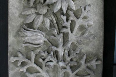 A2446 Plaster decoration, Flannel Flowers, plaster, used by Lucien Henry to teach apprentices in building trades and art students at Sydney Technical College, Ultimo, Sydney, New South Wales, Australia, 1882-1891, maker unknown
