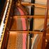 Image 21 of 23, 99/88/1 Grand piano with cover, Huon pine / King William pine / casuarina / metal, Stuart & Sons, Newcastle, New South Wales, Australia, 1998-1999. Click to enlarge