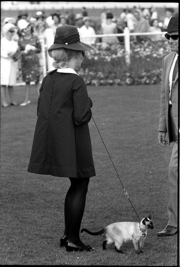 96/44/1-5/4/142/2 Negative, black and white, woman with cat on leash at Randwick race course, for the book 'Sydney, A Book of Photographs', 35mm acetate film, David Mist, Sydney, New South Wales, Australia, 1969