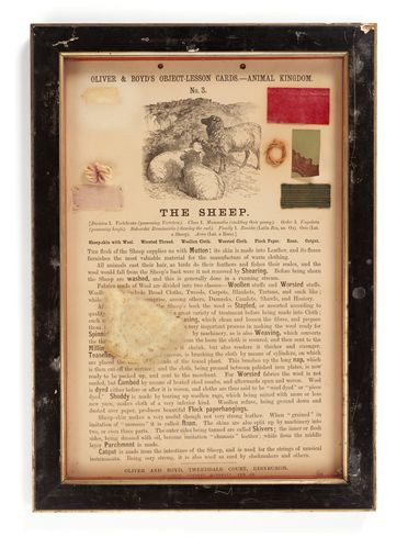 P407 Object lesson card, part of collection, 'The Sheep', framed, sheepskin / wool / catgut / cardboard / glass / wood / paper, published by Oliver and Boyd, Edinburgh, Scotland, 1880-1884